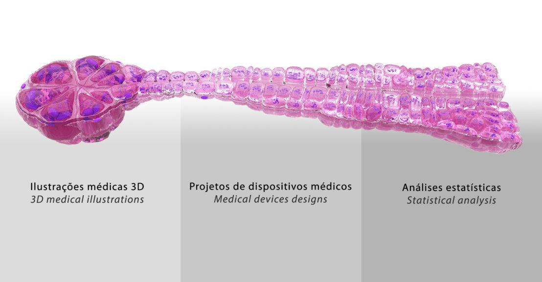 Fábio Andriolo - Ilustrações médicas 3D, projetos de dispositivos médicos, análises estatísticas